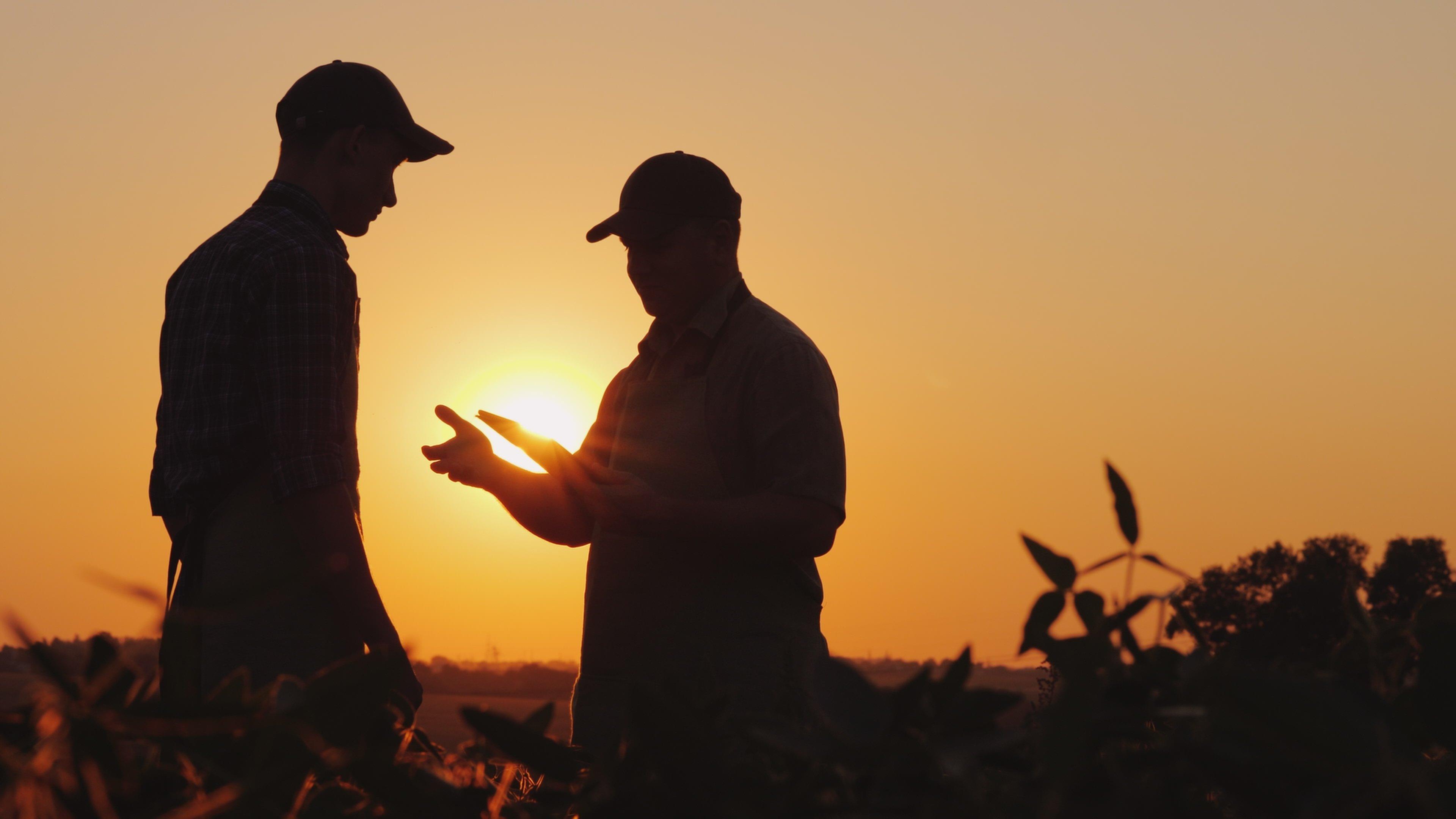 farmer-sunrise-sunset-field-male-man